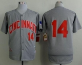 Mitchell And Ness 1969 Cincinnati Reds #14 Pete Rose Grey Throwback Stitched MLB Jersey