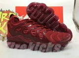 Nike Air Vapormax Plus TN Men AAA Shoes - BBW (37)