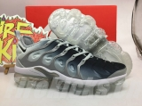 Nike Air Vapormax Plus TN Men AAA Shoes - BBW (52)