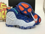 Nike Air Foamposite Pro Kid Shoes-SY (7)